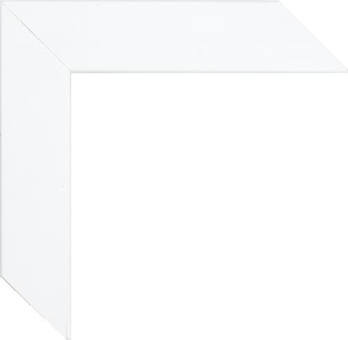 Poster White